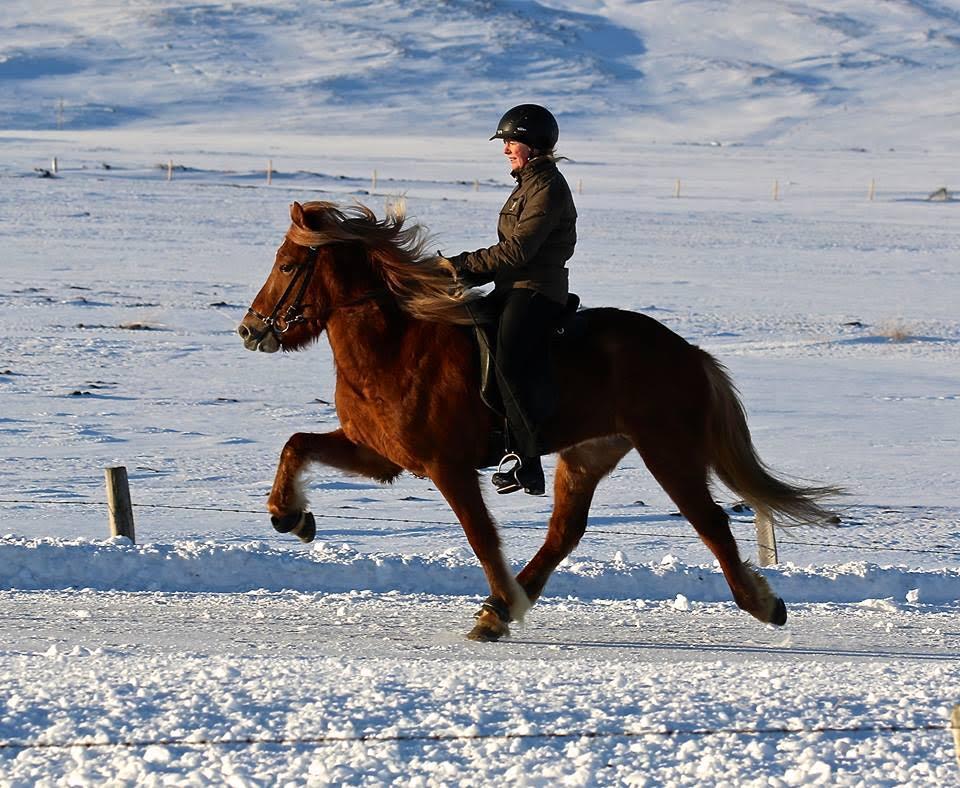 Arya from Garðshorni