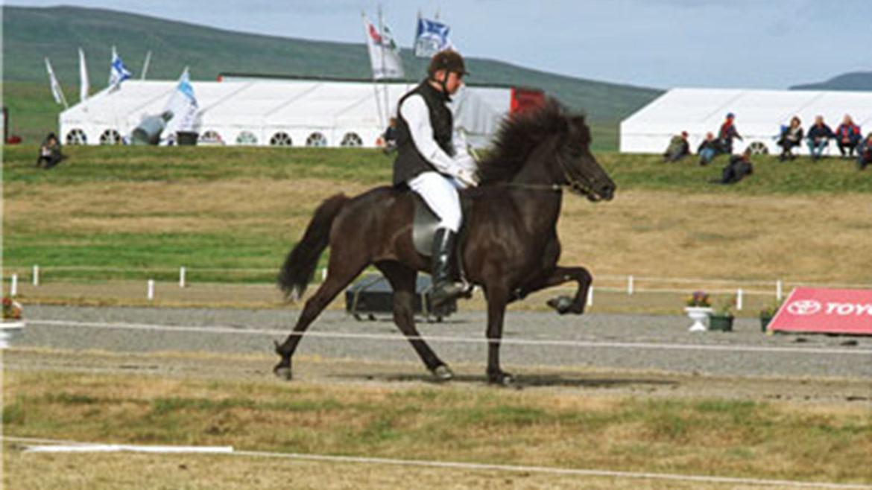 Hrefna from Austvaðsholti